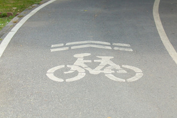 Bicycle lane in the public park.