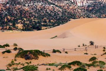 ORV recreational area defined by fences at Coral Pink Sand Dunes State Park in Utah