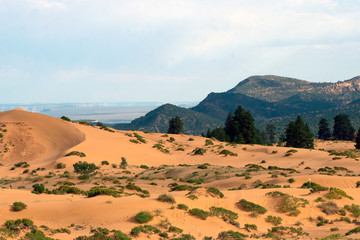 Coral Pink Sand Dunes State Park and the distant landscape in Utah