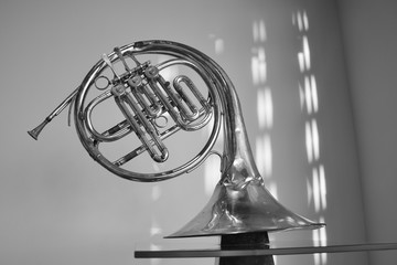 black and white. old musical instrument