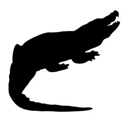 silhouette of a crocodile on a white background