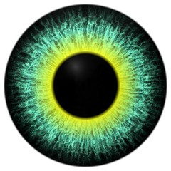 Deurstickers Iris Eye iris generated
