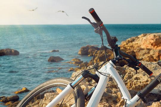 bicycle on beach near the sea