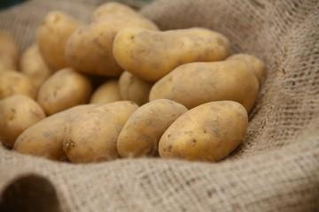 Kartoffel Essen