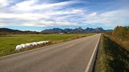 Strada in mezzo ai campi in Norvegia