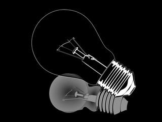 White and black opposite reflection lightbulb illustration isola