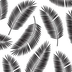Palm Leaf Vector Frame Background Illustration