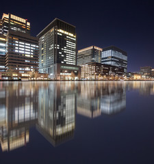 View of Tokyo business building at night time