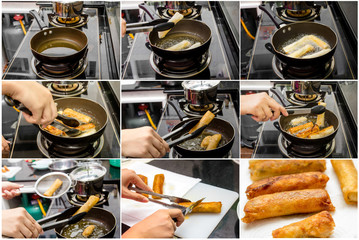 Fried Chinese Traditional Spring rolls