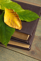 books with leaves on wooden background