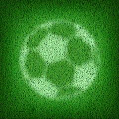 Soccer ball on green field.