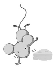 Little mouse doing one handstand