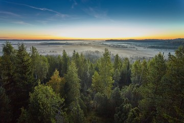 Sunrise in the swamp in Finland. Misty morning in the marshes and the forest on the foreground.