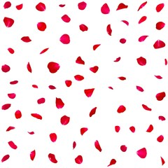 Seamless texture of red rose petals