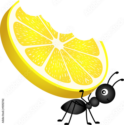"""""""Ant Carrying A Lemon"""" Stock Image And Royalty-free Vector"""