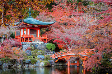 The leave change color of red in Tample japan.