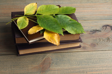 a book and green leaves on wooden background