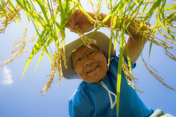 実りの秋に喜ぶシニアの農夫