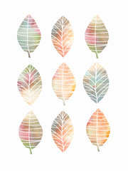 Collection of colorful autumn leaves, isolated on white background. Hand drawn symbol, icon. Colorful sketch for your design.