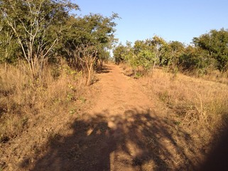 A road in a rural area of Lusaka, Zambia, Africa.