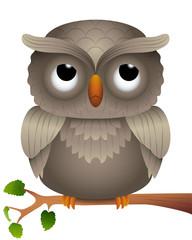 Cartoon of an Owl on a Branch