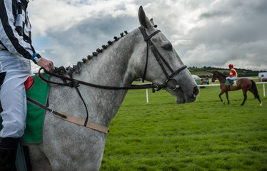grey race horse and jockey on race track