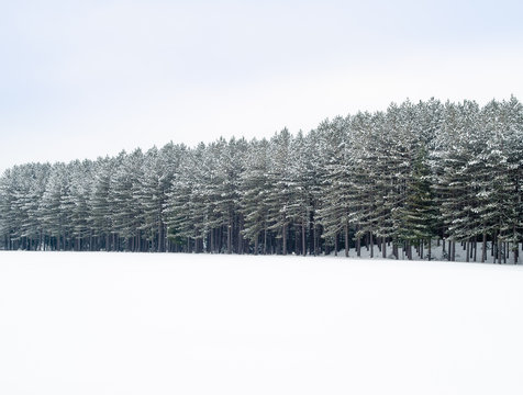 Mount-Tremblant, Quebec, Canada ski resort village