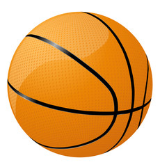 Basketball vector icon image