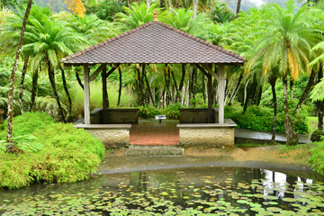 France, the picturesque garden of Balata in Martinique