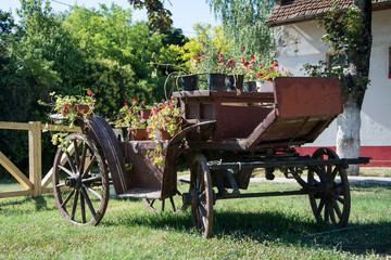 Old vintage Carriages with flowers photographed on a sunny day, in Zobnatica park near Subotica. Public entrance.