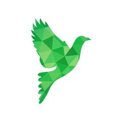 Green Dove Bird