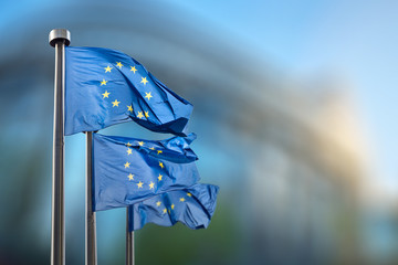 Wall Mural - European Union flags against European Parliament