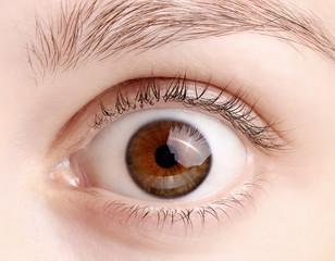 Macro image of wide open female brown eye