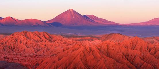 Catarpe, Licancabur volcano, Atacama desert, Chile