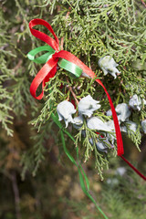 Christmas fir branch with cones and festive ribbons, close up, selective focus