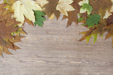 Autumn leaves yellowed wooden background close up, selective focus