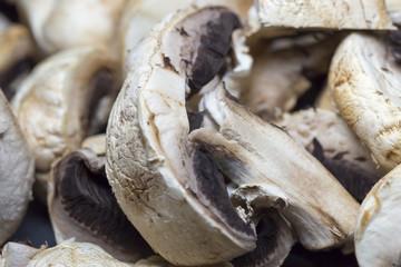 Agaricus Mushroom Close Up