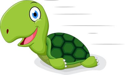 Fun turtle cartoon