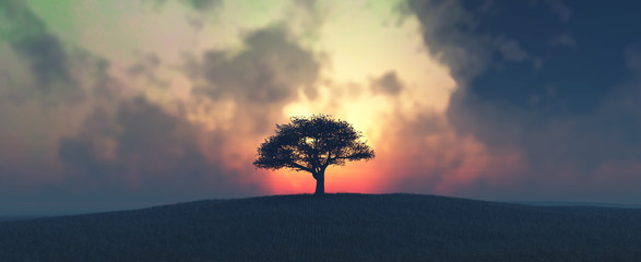 Photo sur Aluminium Arbre sunset and tree