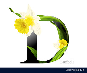 Letter D vector alphabet with daffodil flower. ABC concept type