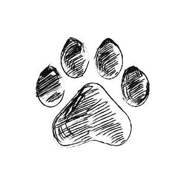 hand drawn doodle of animal footpri, Vector illustration.
