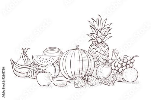 fruits drawing vector illustration