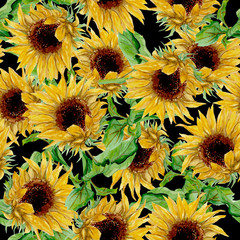 Seamless pattern with yellow sunflowers painted in watercolor on a black background
