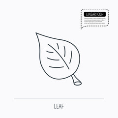 Leaf icon. Natural eco sign.