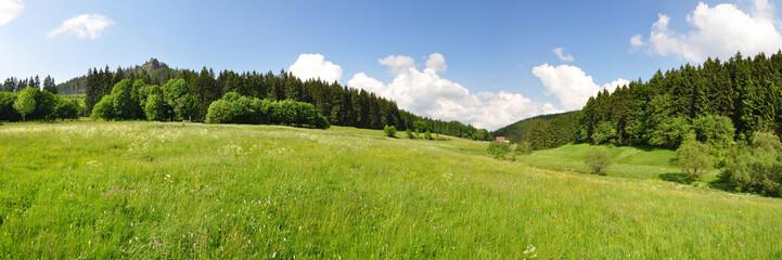 Panoramafoto Kanzlersgrund / Thüringer Wald