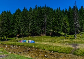 PADINA FEST, ROMANIA - AUGUST 2, 2015: Hikers camp near forest at Padina in Romania on August 2, 2015.