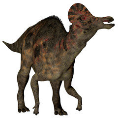 Corythosaurus Duck-billed Dinosaur - Corythosaurus is a herbivorous duck-billed dinosaur that lived in North America during the Cretaceous Period.