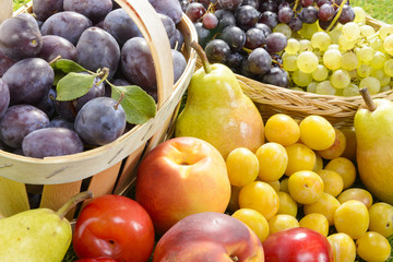 different seasonal fruits, plums, pears, grapes