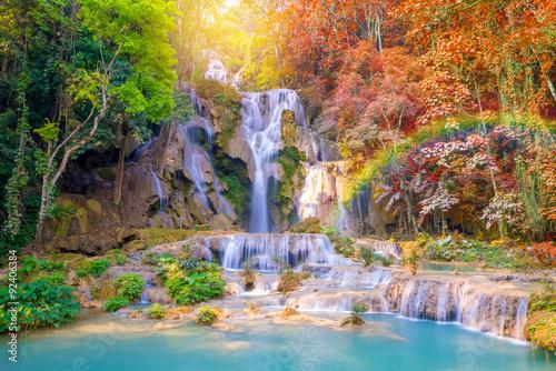природа водопад деревья радуга  № 70438 без смс