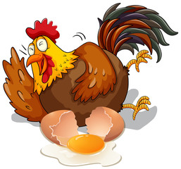 Chicken laughing and cracking egg